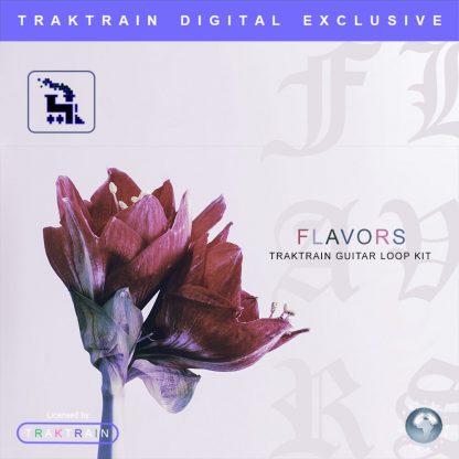 Cover for «Flavors» Traktrain Guitar Loop Kit
